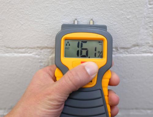 Feuchtigkeitsmesser Test 2019: Vergleich der besten Feuchtigkeitsmesser