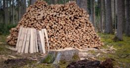 Brennholzsaege