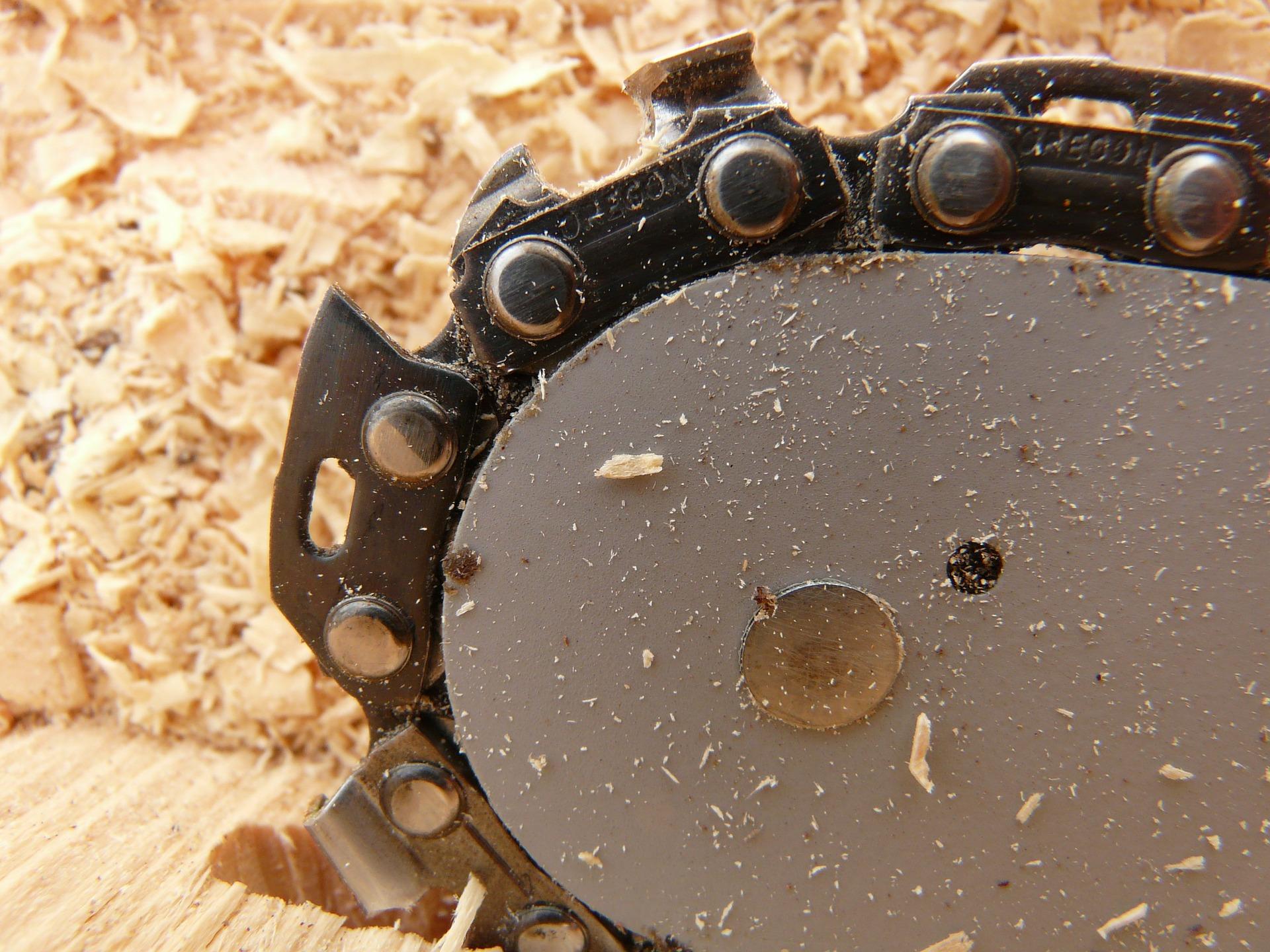 Brennholzsaege oft die Kettensaege