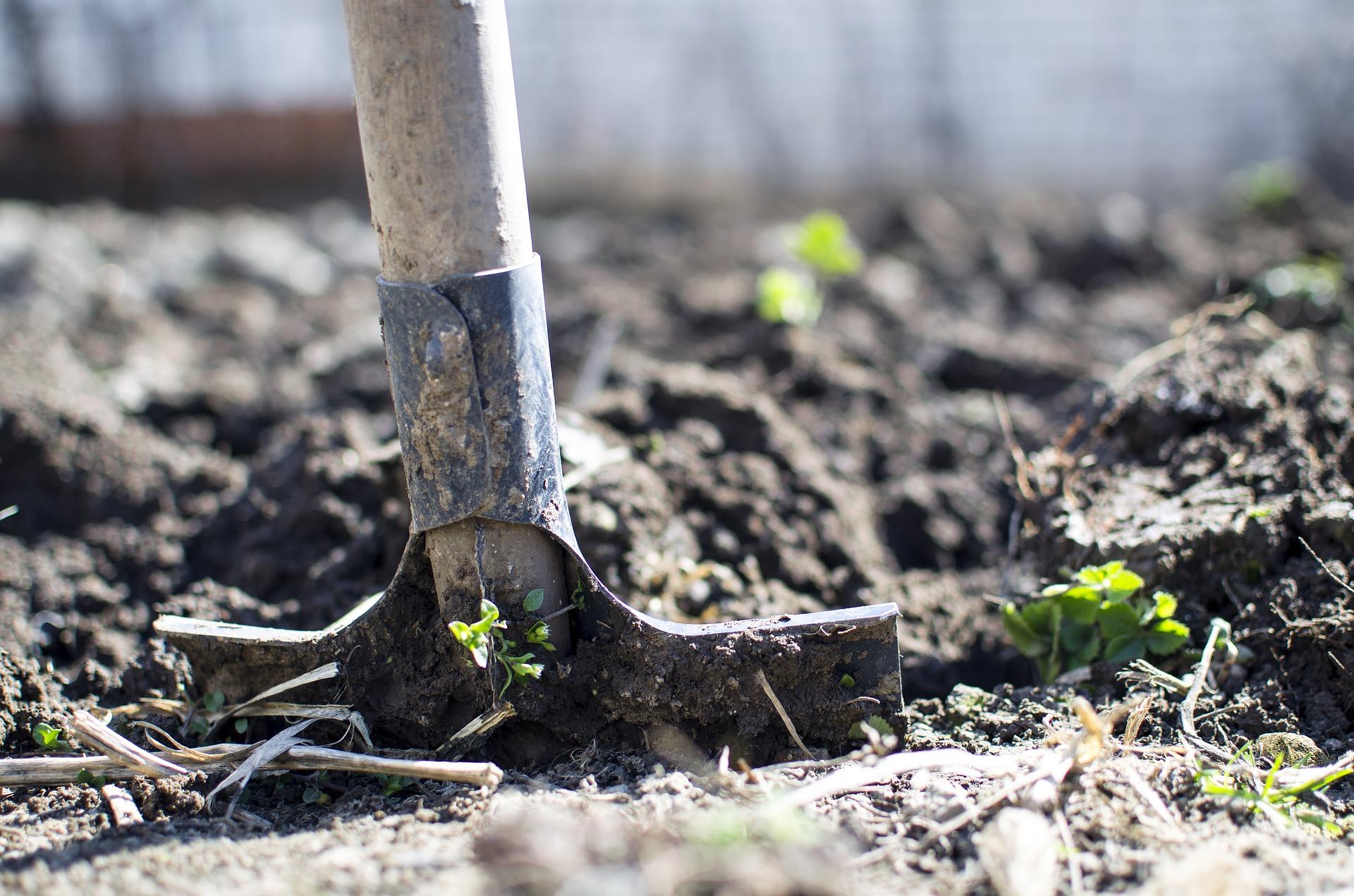 Erdbohrer Pflanzen einpflanzen Gartenarbeit