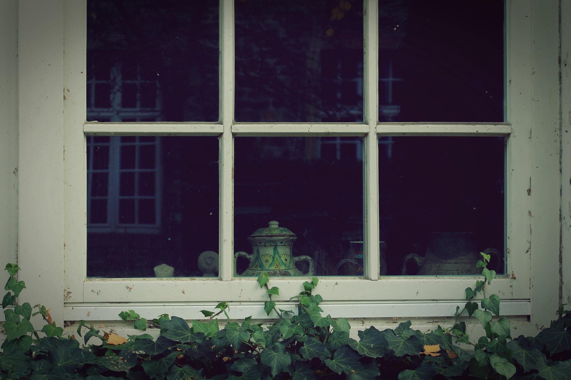 Saugheber Fenster ausstauschen